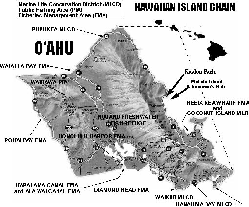 oahu saltwater fishing regulations